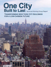NYC Technical Working Group Report